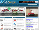 Thumbnail SEO - Search Engine Optimization Niche Wordpress Blogs (3 Income Streams) + Review Sites