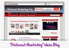 Thumbnail Pinterest Marketing Niche Blog