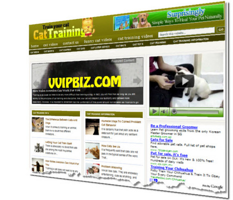 Product picture Cat Training Wordpress Blogs + Review Sites (3 Income Streams)