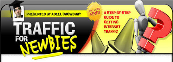 Product picture Traffic for Newbies: A Step-By-Step Guide To Getting Internet Traffic (PLR)
