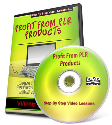 Product picture How To Profit From PLR Products Video Series + Special Bonus